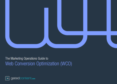 Web conversion optimization guide